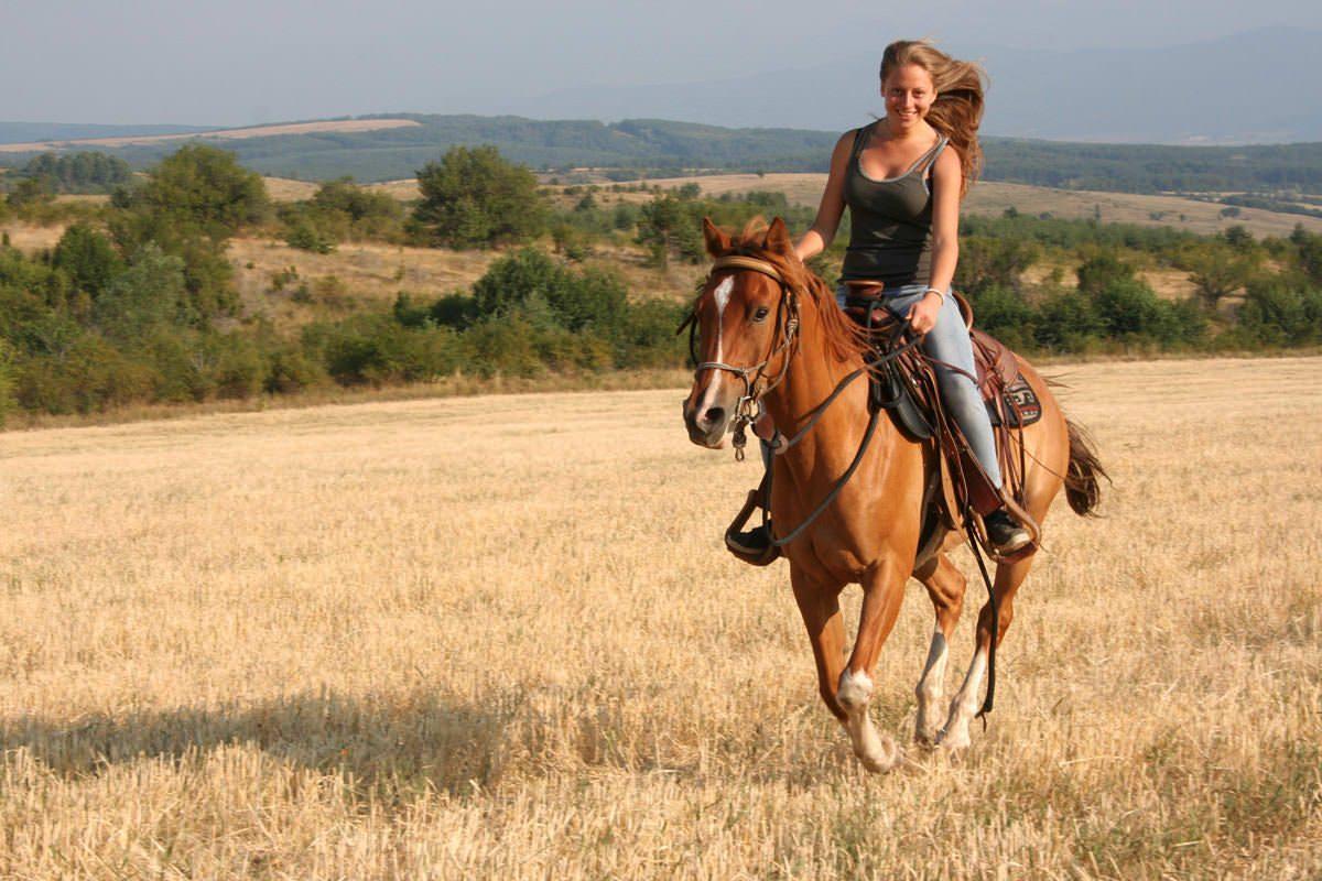 GoPro at Adgor Horse Base