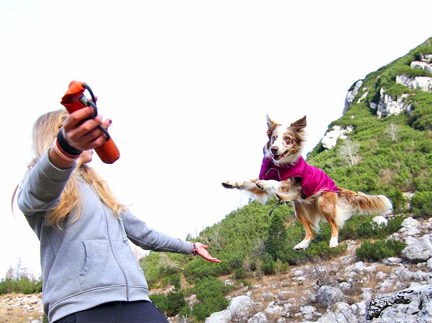 Приключенска екипировка за кучета от Ruffwear